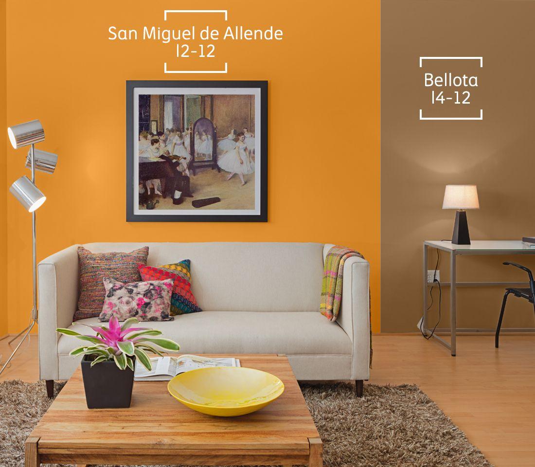 Poliuretanos comex monterrey for Decoracion de interiores monterrey